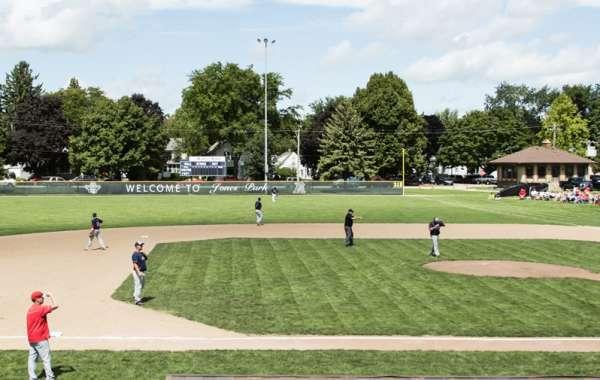 Baseball Festival