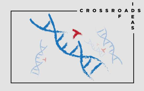Crossroads of Ideas. From CRISPR Twins to Real Therapies: The Future of Genome Editing