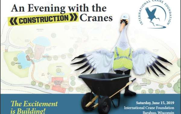 An Evening with the Cranes