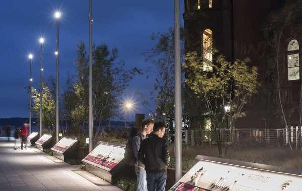 Stargazing in Alumni Park