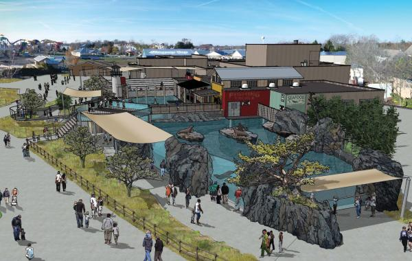 Adventure Cove Rendering