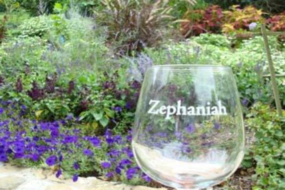 112042_5068_Zephaniah_garden.JPG