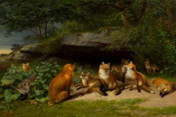 1349_6230_red fox art.jpg