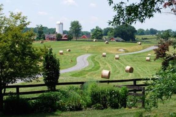 2271_3888_The Farm at Goodstone.jpg