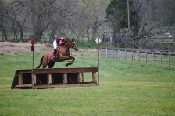 60_4476_horse trials 2.jpg