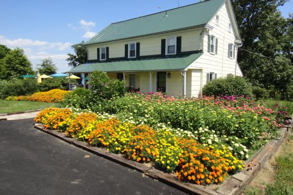 Farmhouse Tasting Room in Summer