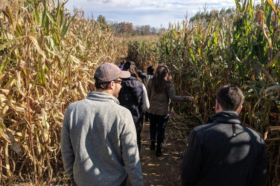 Corn Maze Race