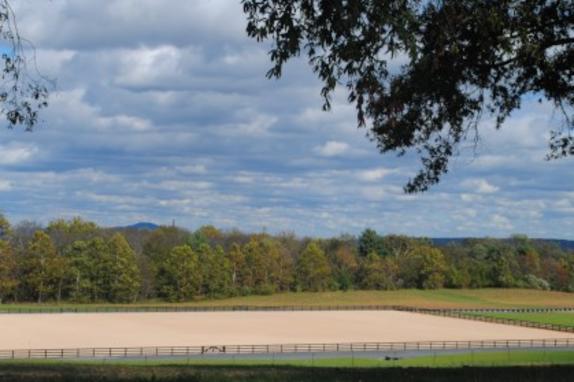 Morven Park Equestrian Center Image 1