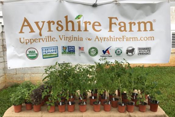 Ayrshire Farm Image 1