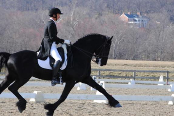 Morven Park Equestrian Center Image 3