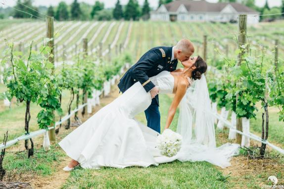 vineyard dip