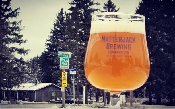 Beer from Natterjack