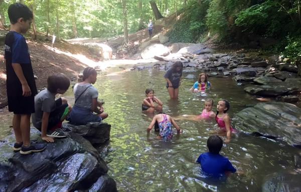 Wildcat Creek Summer