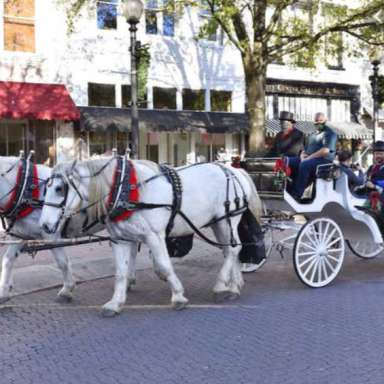 Spring Private Carriage Rides