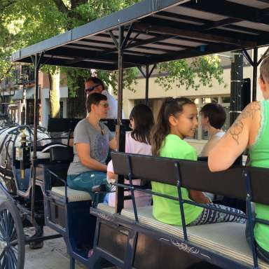 Cool Spring Fling Carriage Rides  - CANCELLED