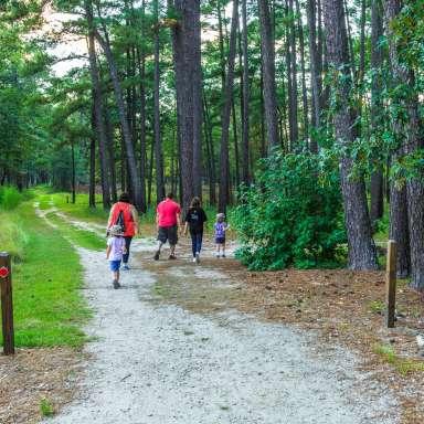 3 Mile History Hike