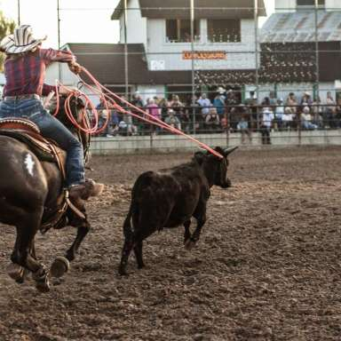 7th Annual National Day of the Cowboy Rodeo