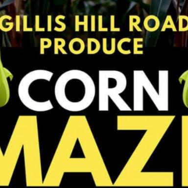 Gillis Hill Road Corn Maze
