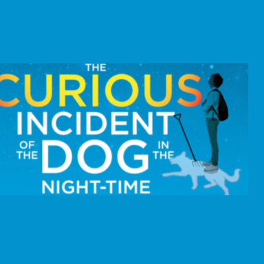 """Curious Incident of the Dog in the Night-Time"" Book Club"