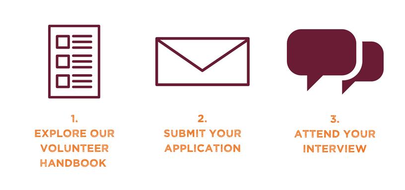 Volunteer Application Infographic