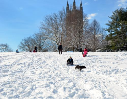 kids sledding down a hill in the snow with princeton university in the background