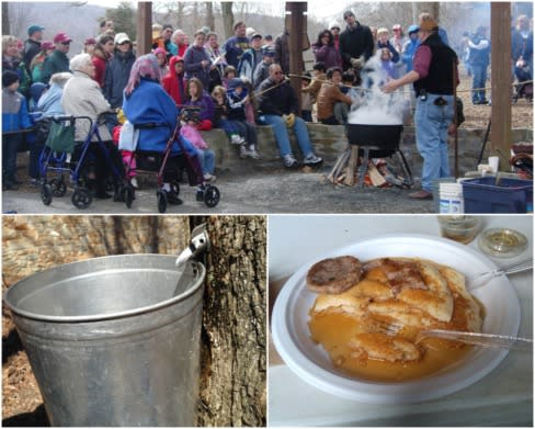 Maple Syrup Festival Photos - People attending a demonstration, taping a tree, and maple syrup on pancakes