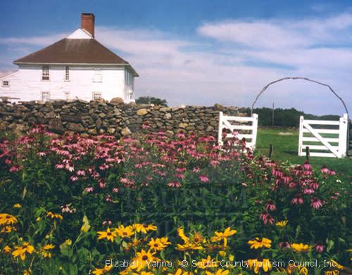 Flowers on a Farm