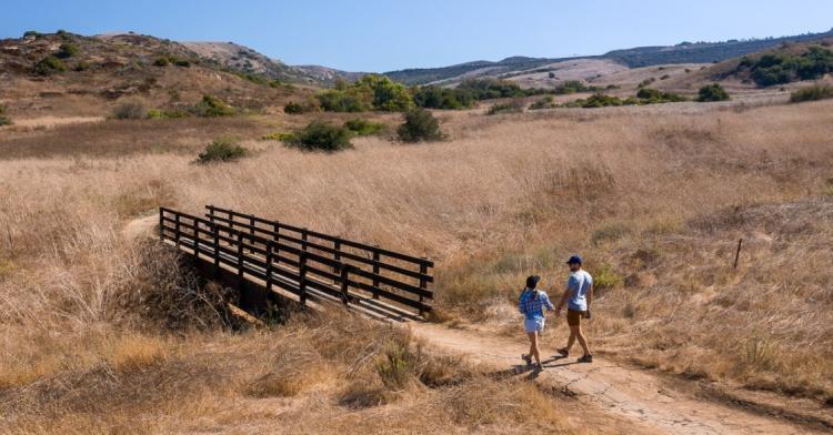 Roamaroo hike