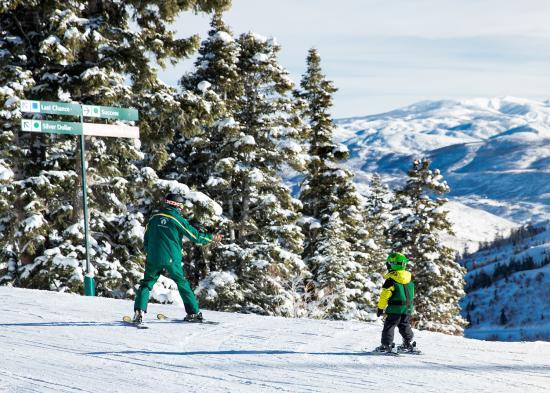 Ski Lessons for Blog