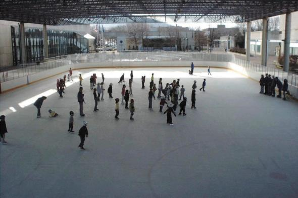 Nasser Civic Center Ice Rink