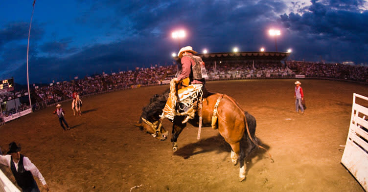 Summer Nights Activities in Utah Valley - Rodeos