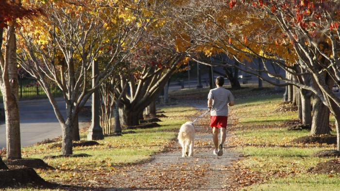 Man jogging along a Sequoyah Park path in Knoxville