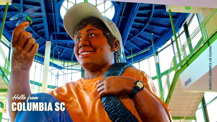 Zoom Background Eddie statue