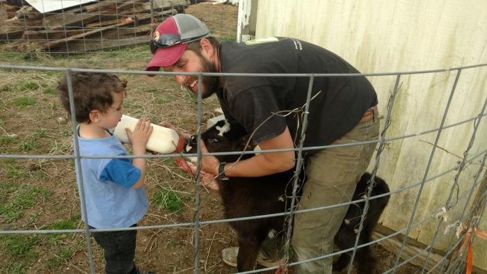 Fort Bacon Farm