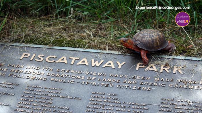 ExPGC Piscataway Park