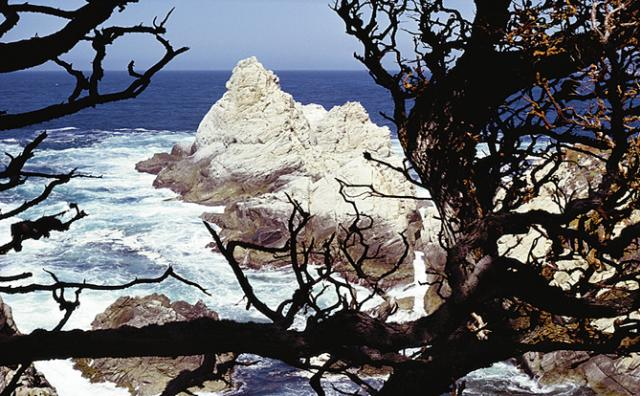Point Lobos State Reserve, Carmel