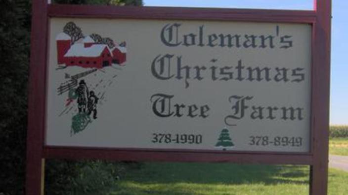 - Colemans Christmas Tree Farm