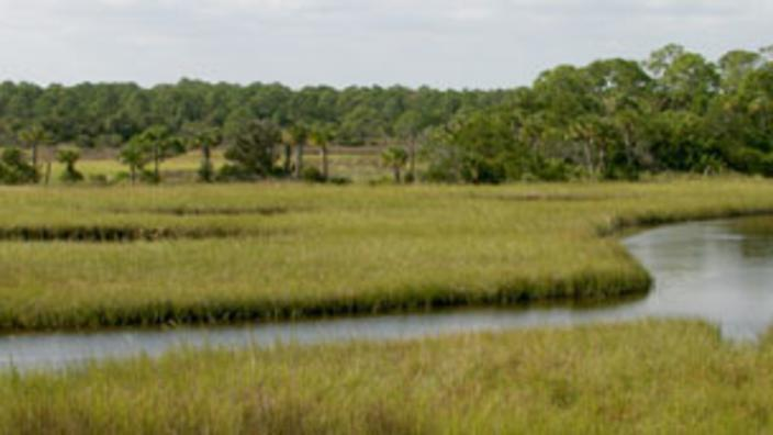 Spruce Creek Park | Port Orange, FL 32127
