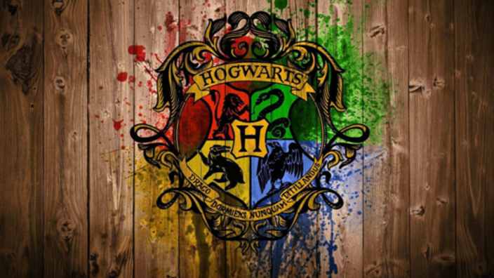 Harry Potter at Liberty Hall