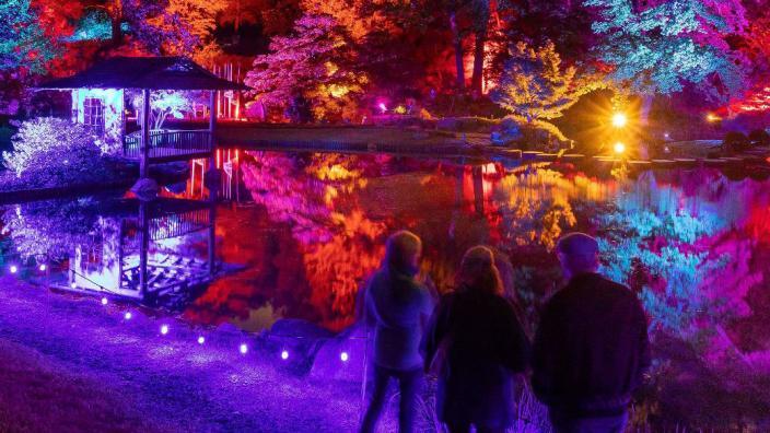 Garden Glow At Maymont 26 Oct 2019