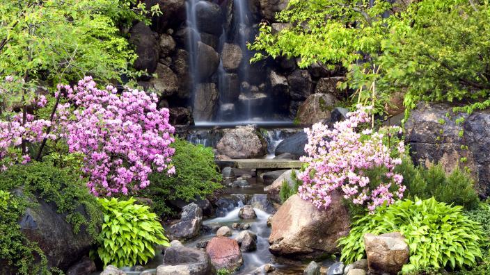 original 2008 05 16 19.49.590 231e60895056a36 5a635478 5056 a36a 0602fb36308c9f77 - Anderson Japanese Gardens Illinois Road Trips