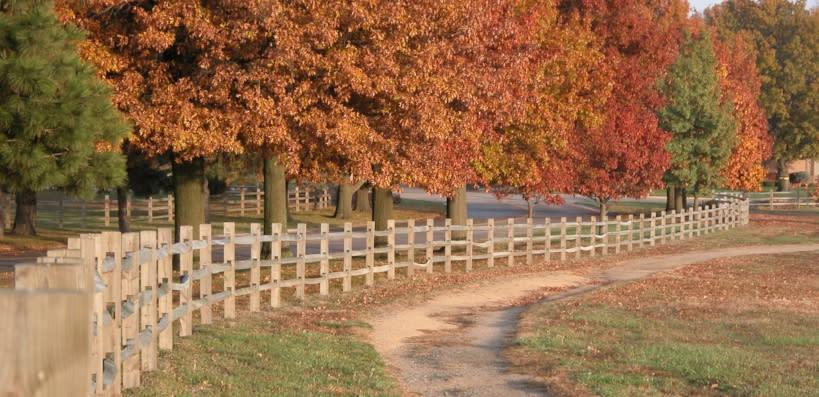 Copy of Cedar Crest - Trails