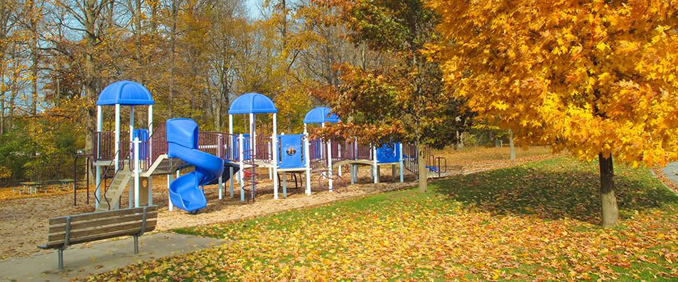 frances park