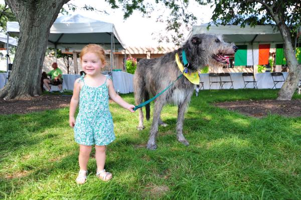 Little girl meets a Celtic Canine at the Dublin Irish Festival