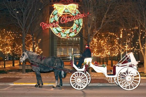 Rosewood Carriage Rides