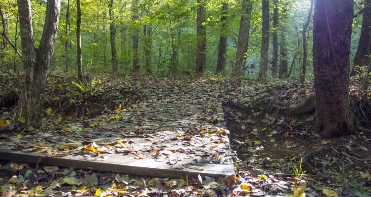 Johnston Mill Nature Preserve