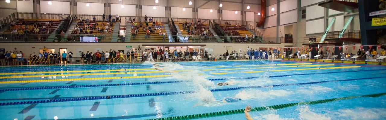 Swim Competition Shaw