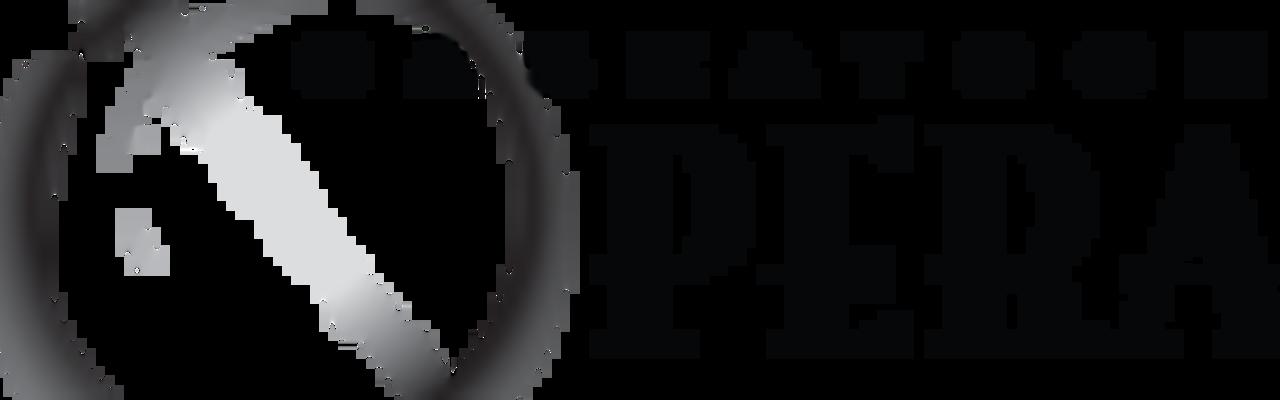 Saskatoon Opera Association