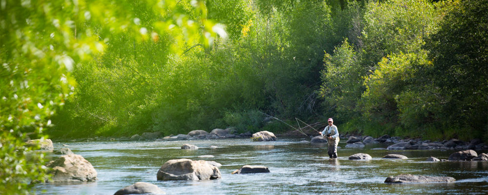Fly Fishing Spring Yampa River