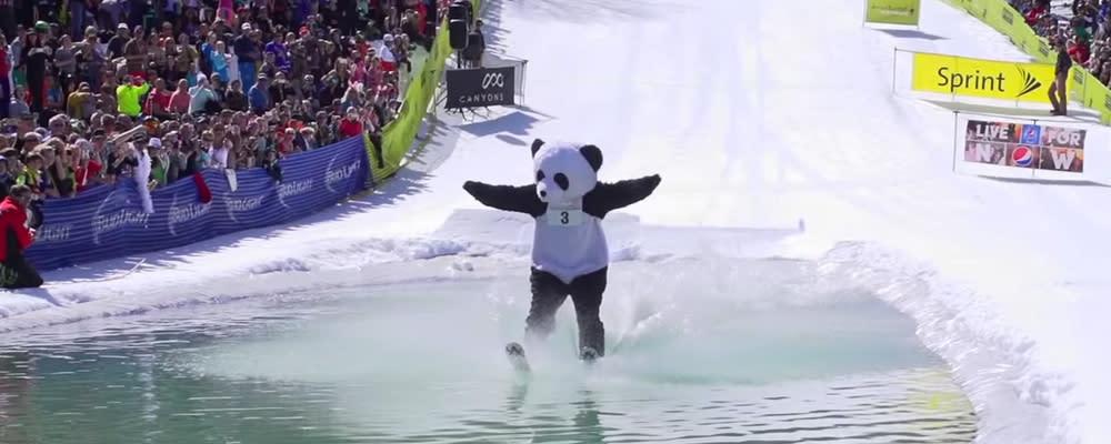Gruv Pond Skim in panda bear costume